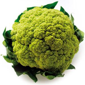 broccolo-300