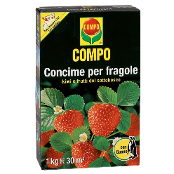 concime-per-fragole