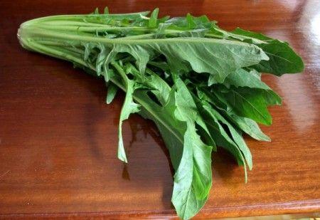 verdura-catalogna