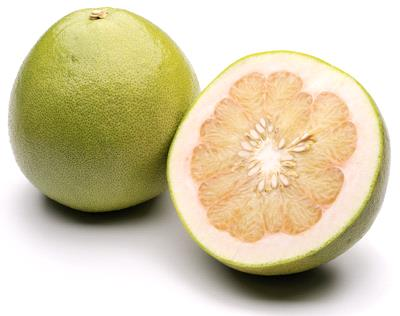 pomelo2-1-it-000